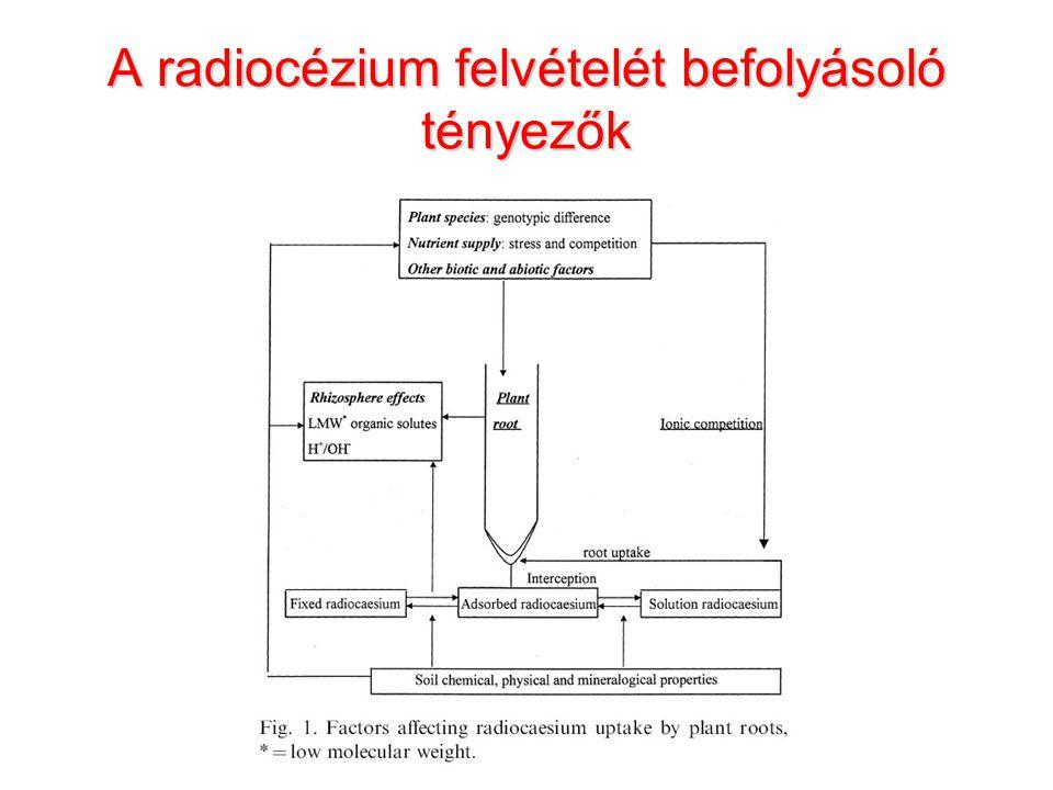 A radiocézium felvételét befolyásoló tényezők