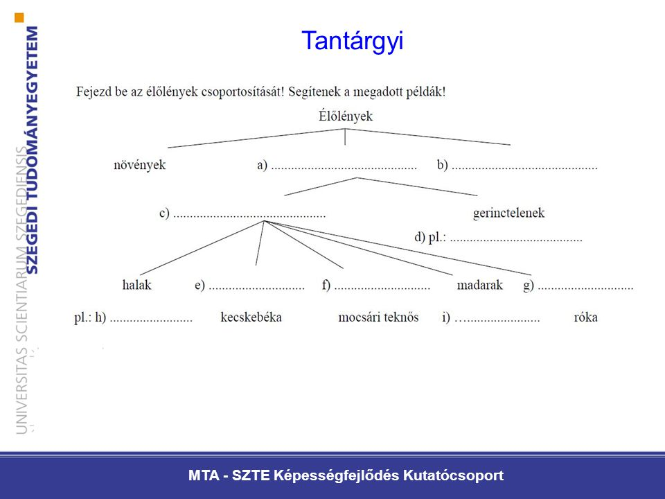MTA - SZTE Képességfejlődés Kutatócsoport Tantárgyi