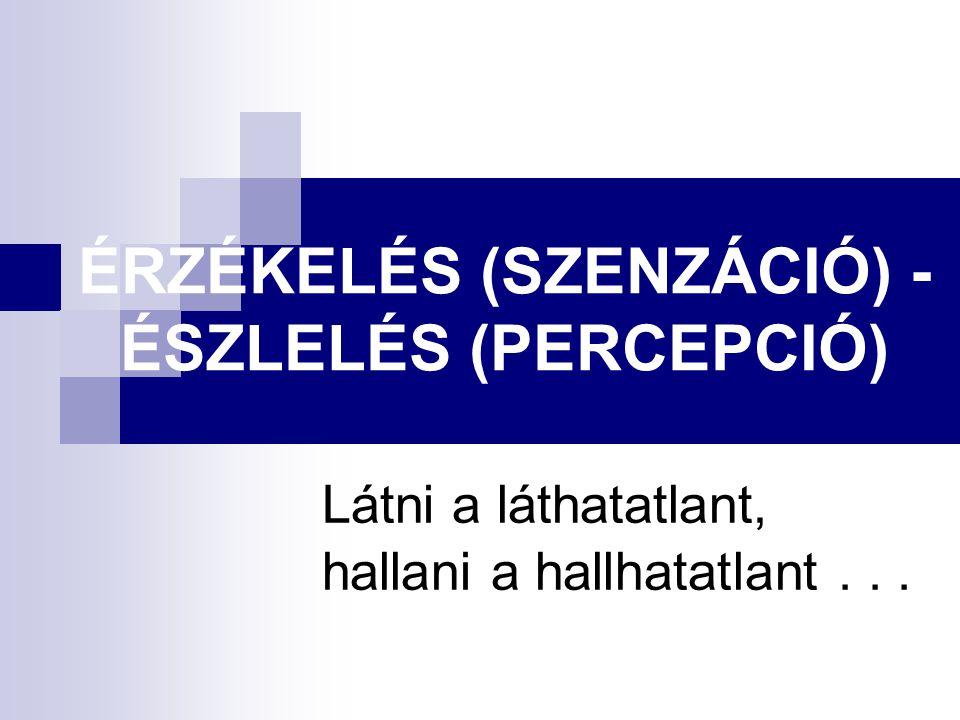 ÉRZÉKELÉS (SZENZÁCIÓ) - ÉSZLELÉS (PERCEPCIÓ) Látni a láthatatlant, hallani a hallhatatlant...