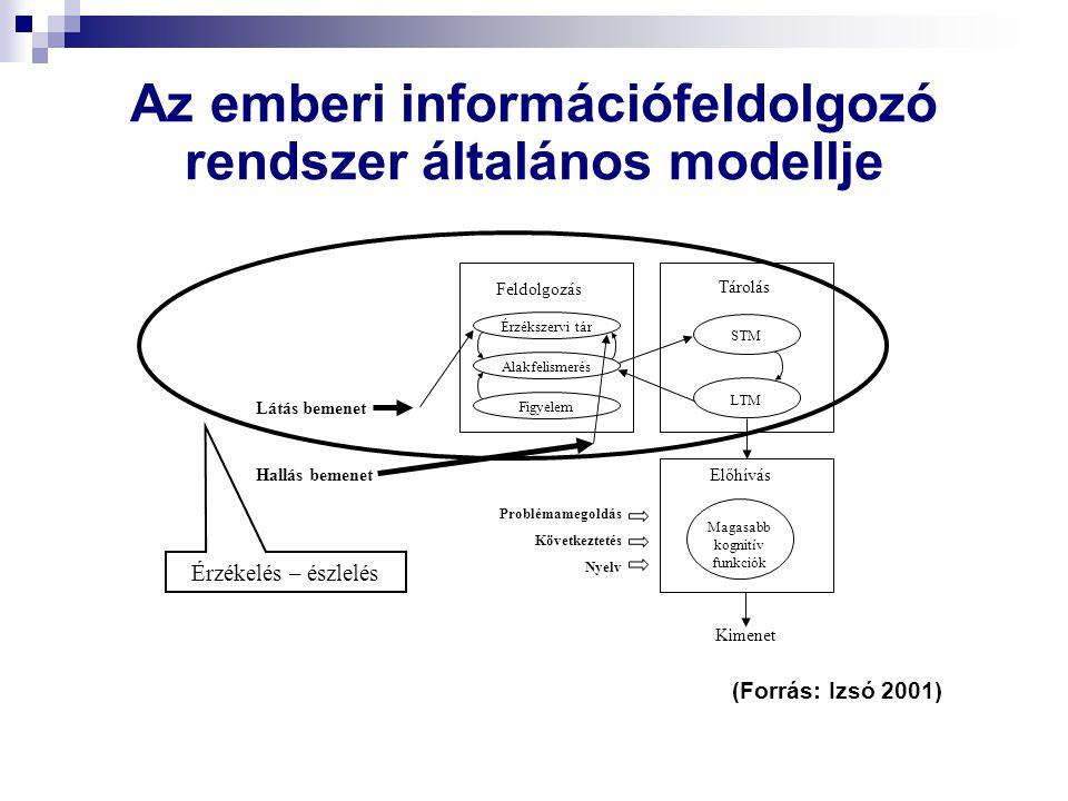 Az emberi információfeldolgozó rendszer általános modellje Feldolgozás Érzékszervi tár Alakfelismerés Figyelem STM LTM Tárolás Magasabb kognitív funkciók Előhívás Problémamegoldás Következtetés Nyelv Látás bemenet Hallás bemenet Érzékelés – észlelés Kimenet (Forrás: Izsó 2001)