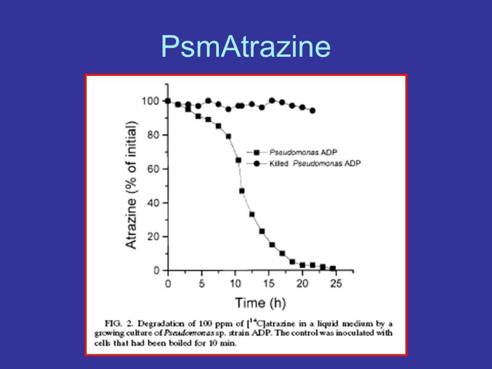 PsmAtrazine