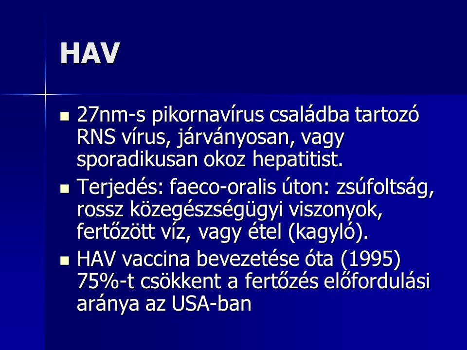 Vírushepatitis Diagnózis fő pontjai: Prodromális tünetek: étvágytalanság, hányinger, rossz közérzet, dohányzási undor.
