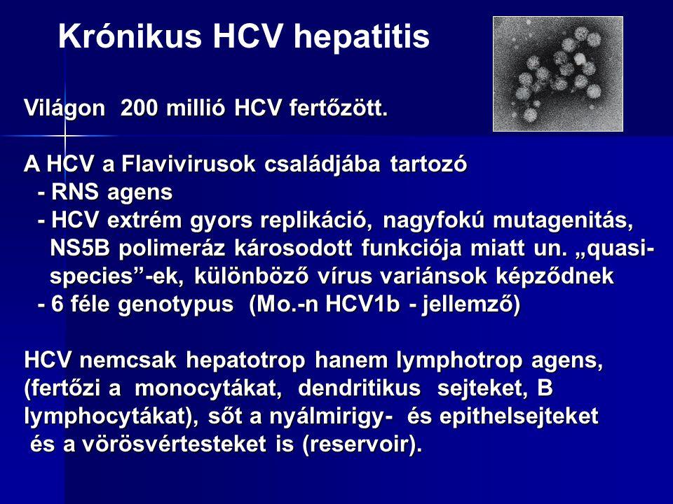 Fertőzési lehetőségek  Főleg parenterális (iv. droghasználók, prostituáltak, tetoválás, testékszerek)  Coinfekció hepatitis B-vel és HIV-vel.  Vert