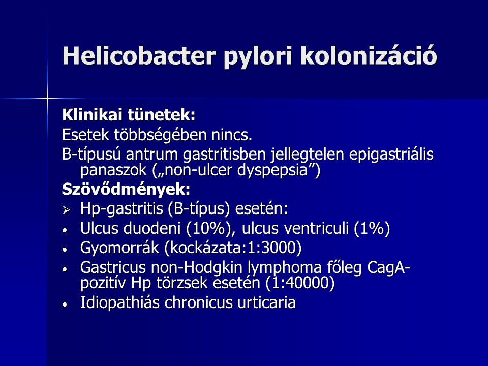 Chronicus gastritis A-típusú gastritis=corpus gastritis=autoimmun gastritis (kb. 5%) A-típusú gastritis=corpus gastritis=autoimmun gastritis (kb. 5%)
