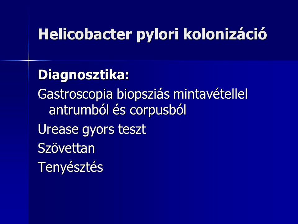 """Helicobacter pylori kolonizáció Klinikai tünetek: Esetek többségében nincs. B-típusú antrum gastritisben jellegtelen epigastriális panaszok (""""non-ulce"""