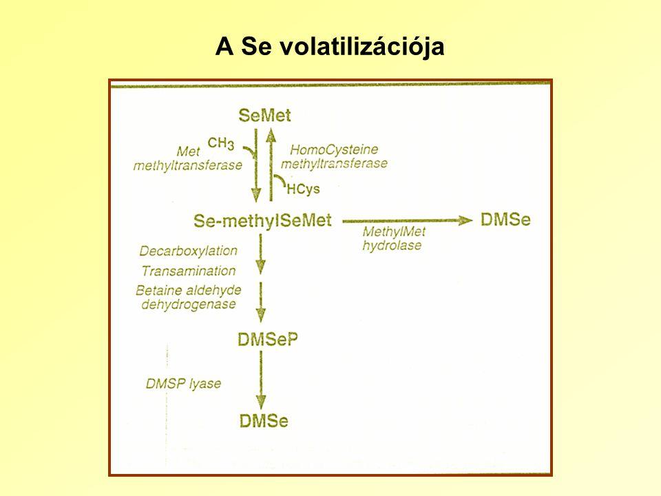 A Se volatilizációja