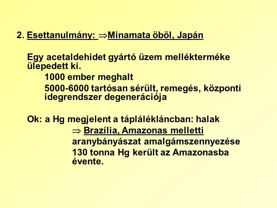 2. Esettanulmány:  Minamata öböl, Japán Egy acetaldehidet gyártó üzem mellékterméke ülepedett ki.
