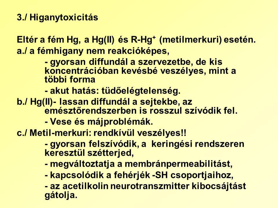 3./ Higanytoxicitás Eltér a fém Hg, a Hg(II) és R-Hg + (metilmerkuri) esetén.