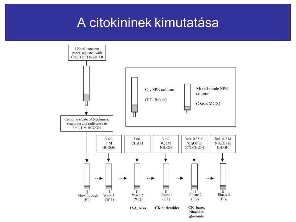 A citokininek kimutatása