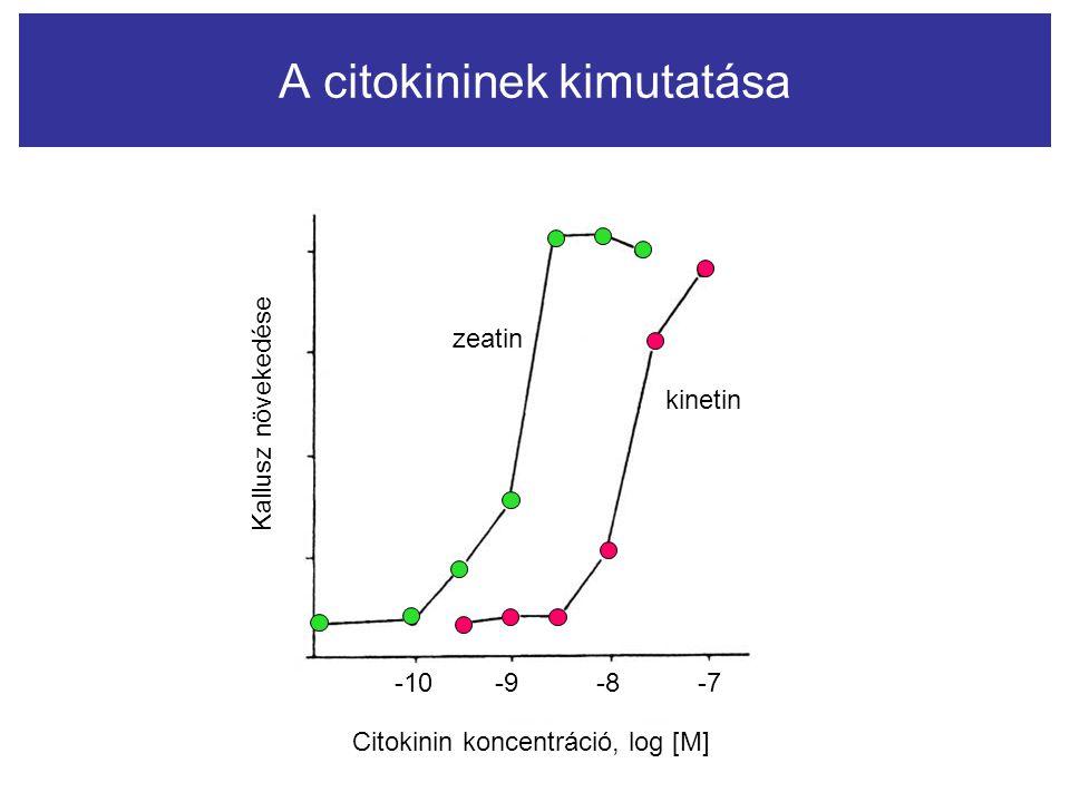 zeatin kinetin Citokinin koncentráció, log [M] -10-9-8-7 Kallusz növekedése