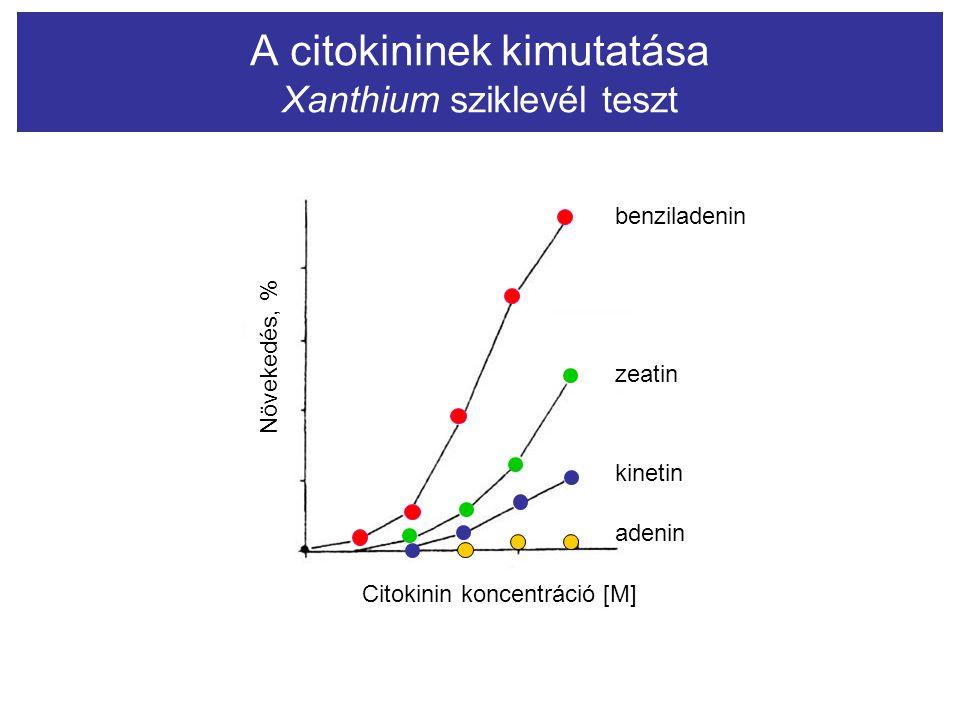 A citokininek kimutatása Xanthium sziklevél teszt Növekedés, % Citokinin koncentráció [M] benziladenin zeatin kinetin adenin