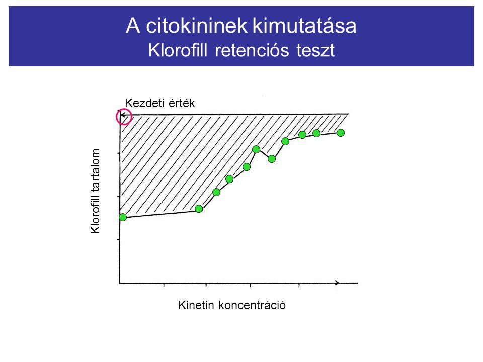 A citokininek kimutatása Klorofill retenciós teszt Kinetin koncentráció Klorofill tartalom Kezdeti érték