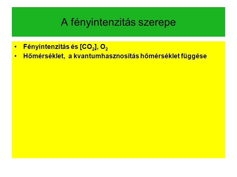 A fényintenzitás szerepe Fényintenzitás és [CO 2 ], O 2 Hőmérséklet, a kvantumhasznosítás hőmérséklet függése