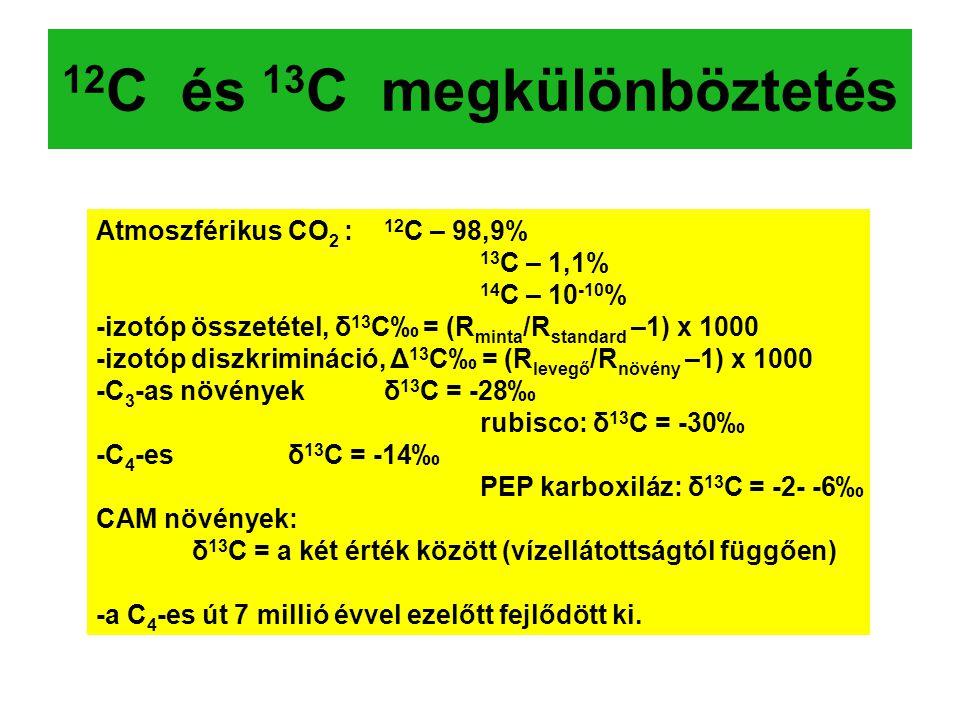 12 C és 13 C megkülönböztetés Atmoszférikus CO 2 : 12 C – 98,9% 13 C – 1,1% 14 C – 10 -10 % -izotóp összetétel, δ 13 C‰ = (R minta /R standard –1) x 1