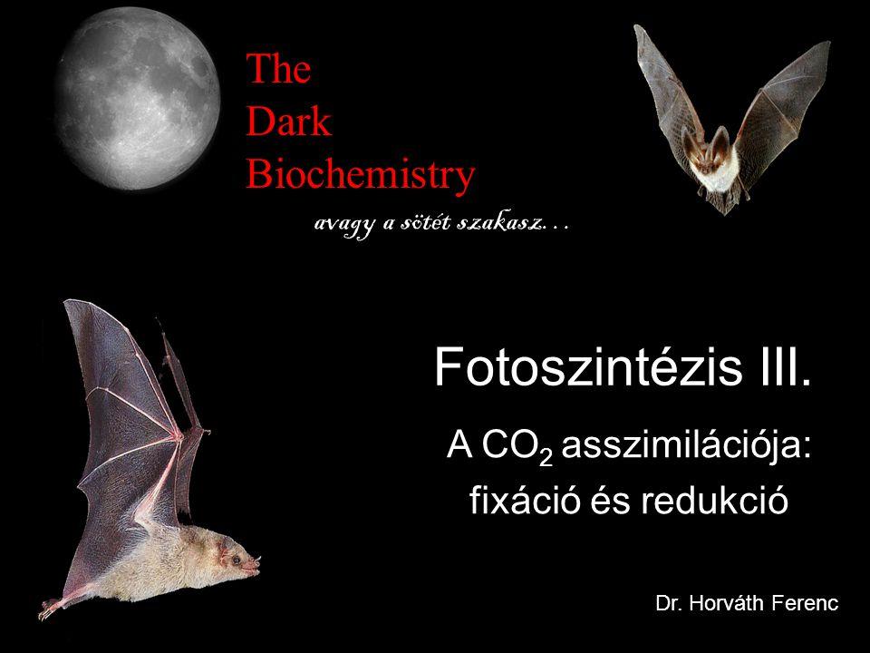 The Dark Biochemistry avagy a sötét szakasz… A CO 2 asszimilációja: fixáció és redukció Fotoszintézis III. Dr. Horváth Ferenc