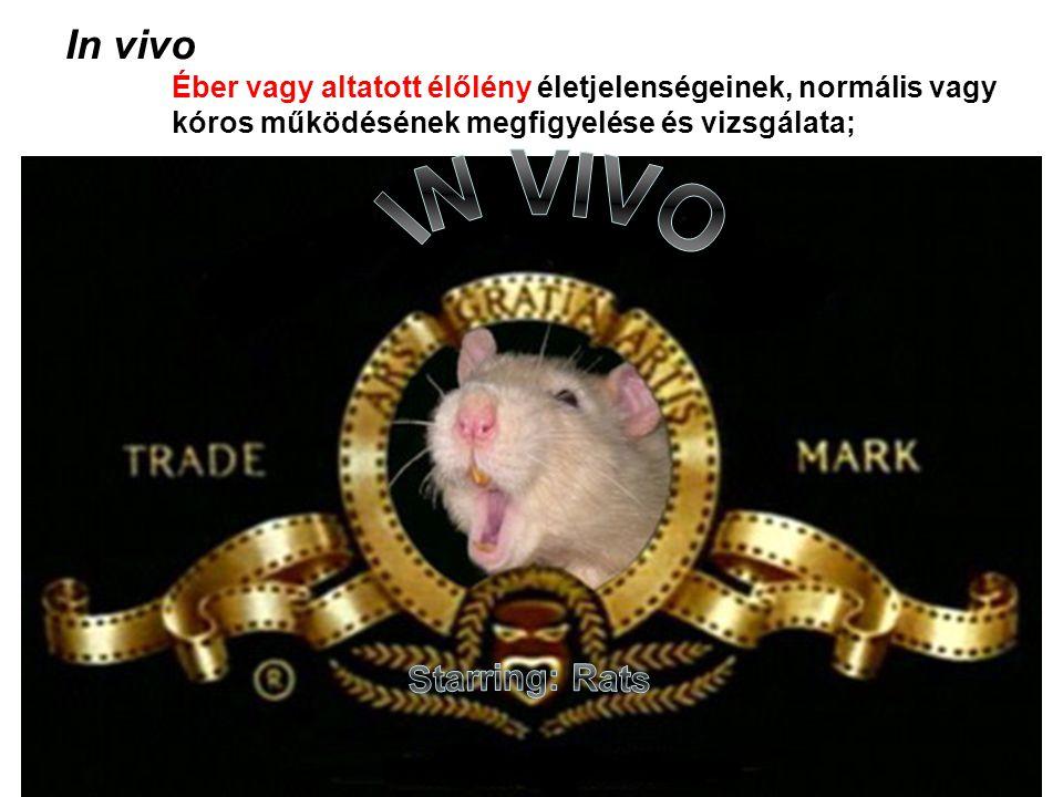 In vivo Éber vagy altatott élőlény életjelenségeinek, normális vagy kóros működésének megfigyelése és vizsgálata;