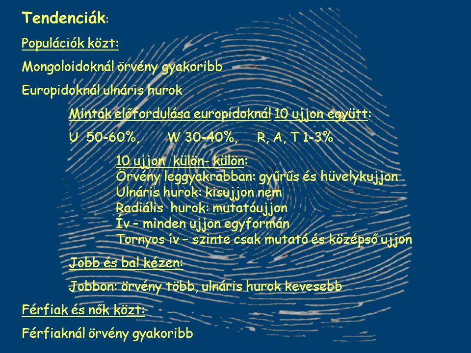 Tendenciák : Populációk közt: Mongoloidoknál örvény gyakoribb Europidoknál ulnáris hurok Minták előfordulása europidoknál 10 ujjon együtt: U 50-60%, W