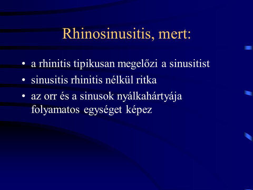 Rhinosinusitis, mert: a rhinitis tipikusan megelőzi a sinusitist sinusitis rhinitis nélkül ritka az orr és a sinusok nyálkahártyája folyamatos egységet képez