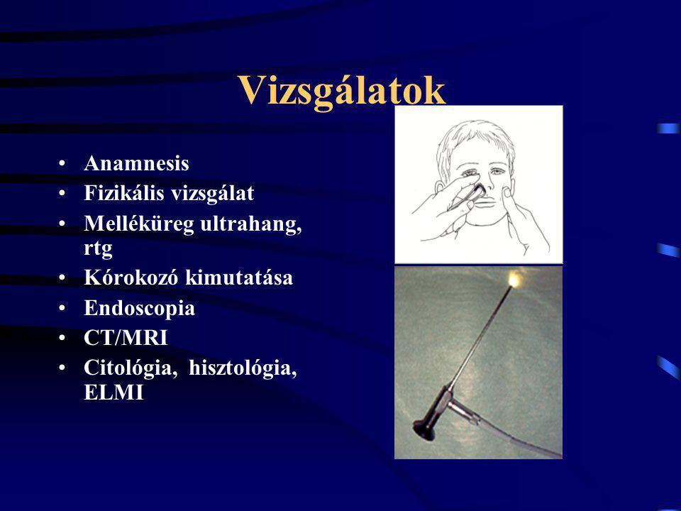 Vizsgálatok Anamnesis Fizikális vizsgálat Melléküreg ultrahang, rtg Kórokozó kimutatása Endoscopia CT/MRI Citológia, hisztológia, ELMI