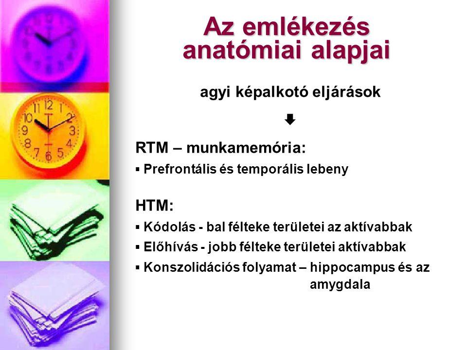Az emlékezés anatómiai alapjai agyi képalkotó eljárások  RTM – munkamemória: ▪ Prefrontális és temporális lebeny HTM: ▪ Kódolás - bal félteke terület