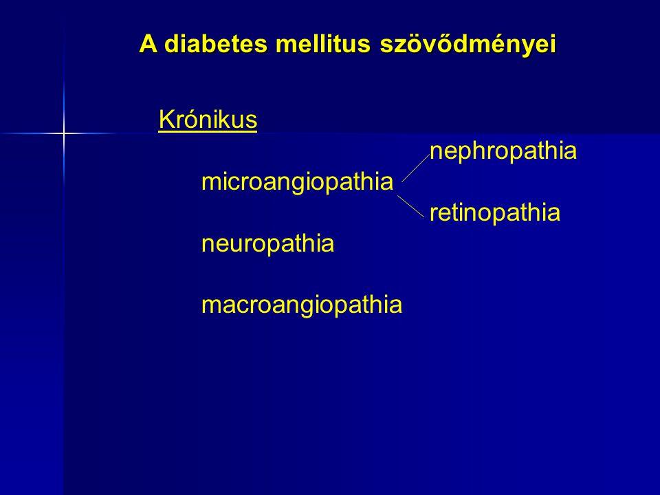 Krónikus nephropathia microangiopathia retinopathia neuropathia macroangiopathia A diabetes mellitus szövődményei