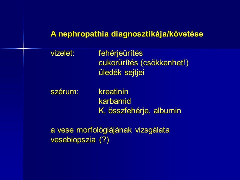 A nephropathia diagnosztikája/követése vizelet: fehérjeürítés cukorürítés (csökkenhet!) üledék sejtjei szérum: kreatinin karbamid K, összfehérje, albumin a vese morfológiájának vizsgálata vesebiopszia (?)