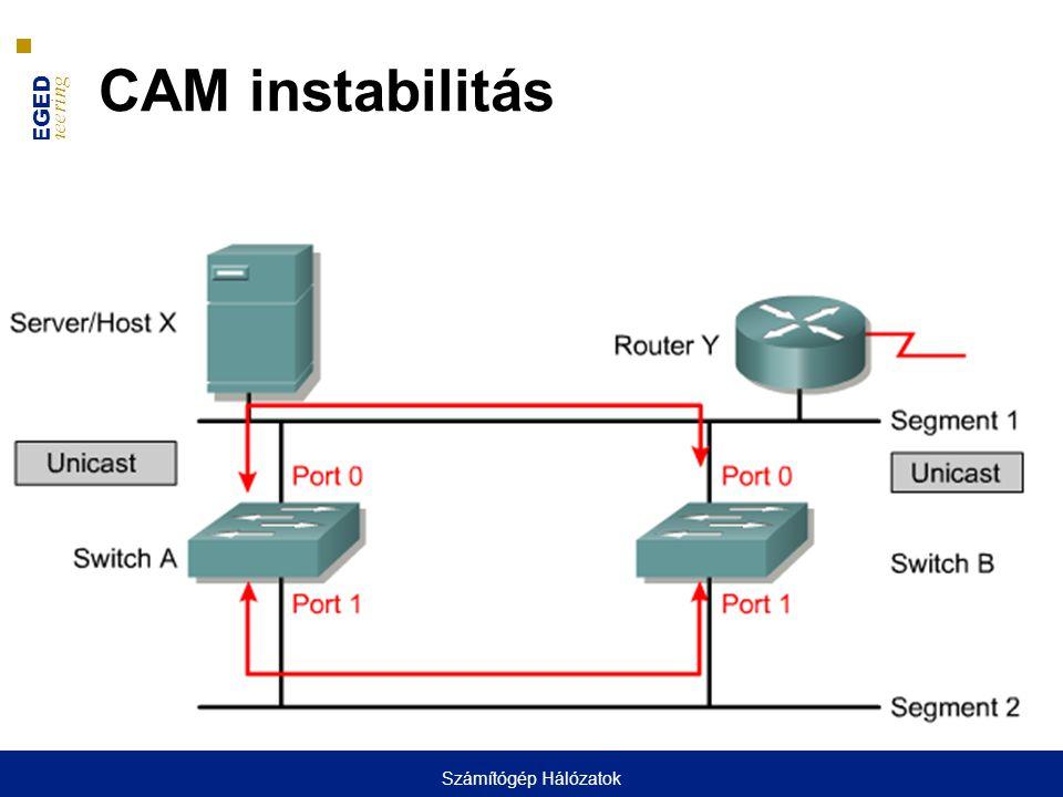 UNIVERSITY OF SZEGED D epartment of Software Engineering UNIVERSITAS SCIENTIARUM SZEGEDIENSIS CAM instabilitás Számítógép Hálózatok