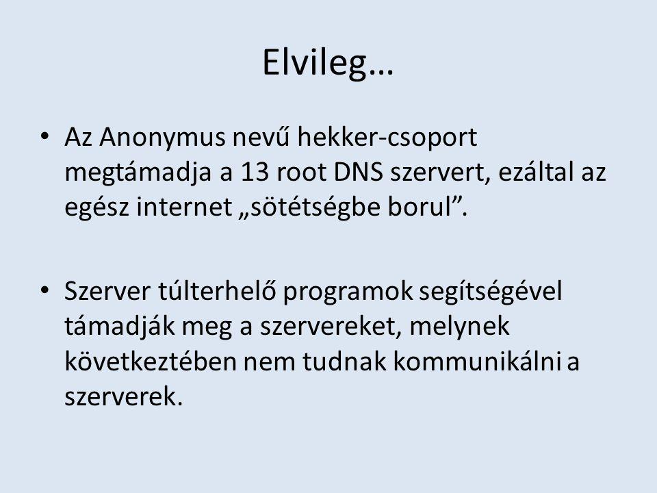 """Elvileg… Az Anonymus nevű hekker-csoport megtámadja a 13 root DNS szervert, ezáltal az egész internet """"sötétségbe borul"""". Szerver túlterhelő programok"""
