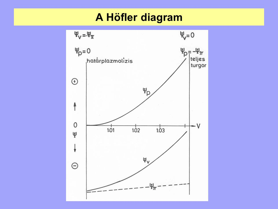 A Höfler diagram