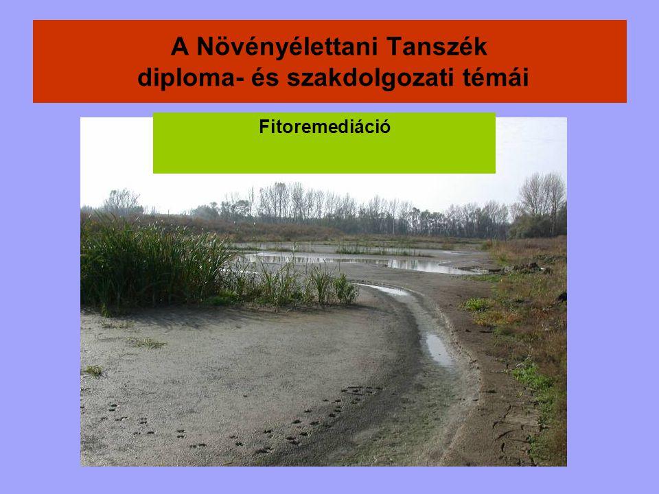 A talaj vízpotenciáljának mérése speciális mérőeszközökkel, közvetlenül történhet
