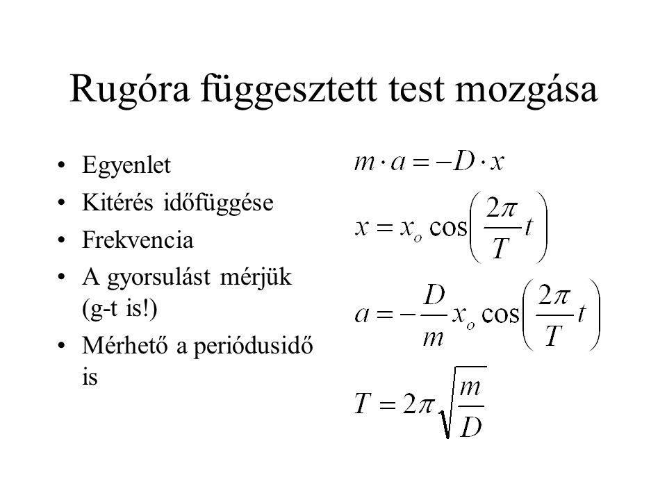 Rugóra függesztett test mozgása Egyenlet Kitérés időfüggése Frekvencia A gyorsulást mérjük (g-t is!) Mérhető a periódusidő is