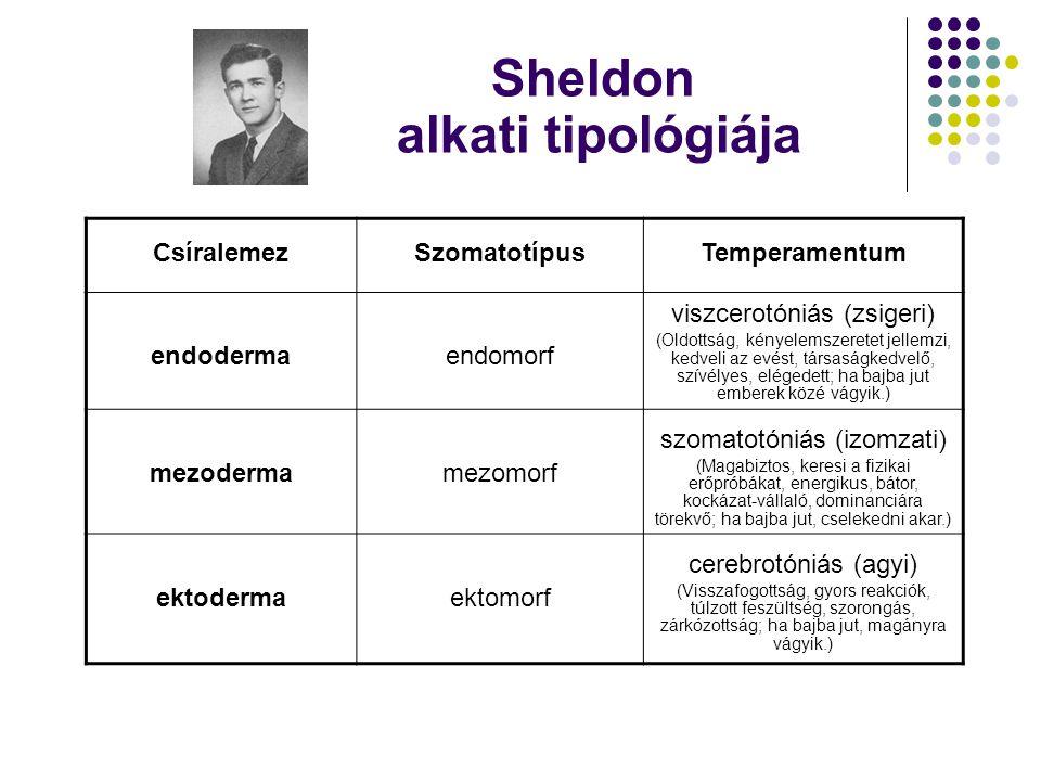 Sheldon alkati tipológiája CsíralemezSzomatotípusTemperamentum endodermaendomorf viszcerotóniás (zsigeri) (Oldottság, kényelemszeretet jellemzi, kedveli az evést, társaságkedvelő, szívélyes, elégedett; ha bajba jut emberek közé vágyik.) mezodermamezomorf szomatotóniás (izomzati) (Magabiztos, keresi a fizikai erőpróbákat, energikus, bátor, kockázat-vállaló, dominanciára törekvő; ha bajba jut, cselekedni akar.) ektodermaektomorf cerebrotóniás (agyi) (Visszafogottság, gyors reakciók, túlzott feszültség, szorongás, zárkózottság; ha bajba jut, magányra vágyik.)
