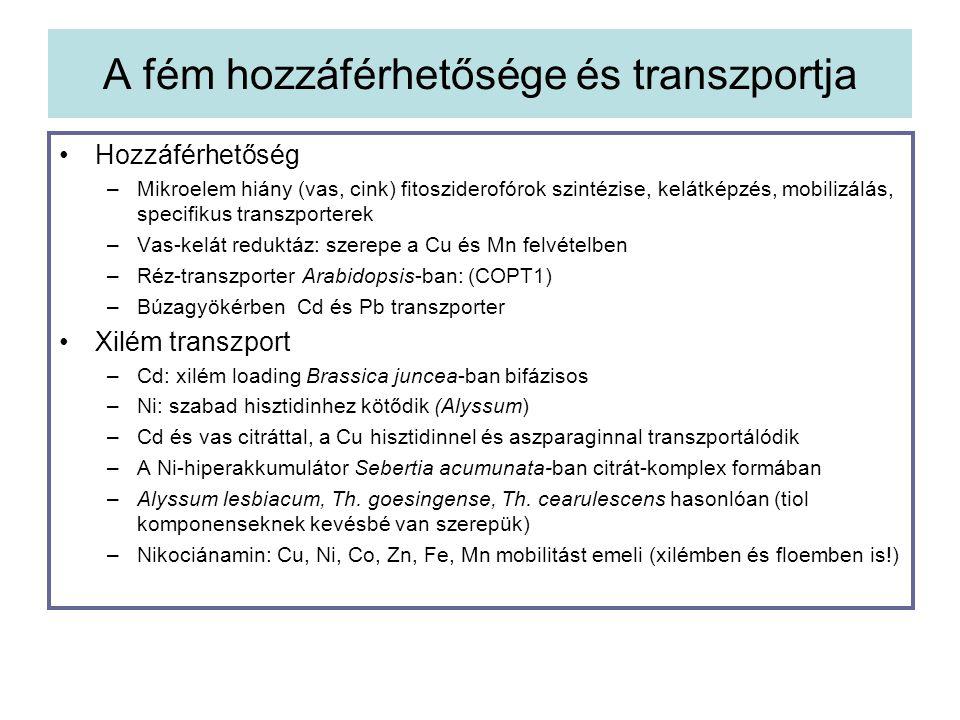A fém hozzáférhetősége és transzportja Hozzáférhetőség –Mikroelem hiány (vas, cink) fitosziderofórok szintézise, kelátképzés, mobilizálás, specifikus