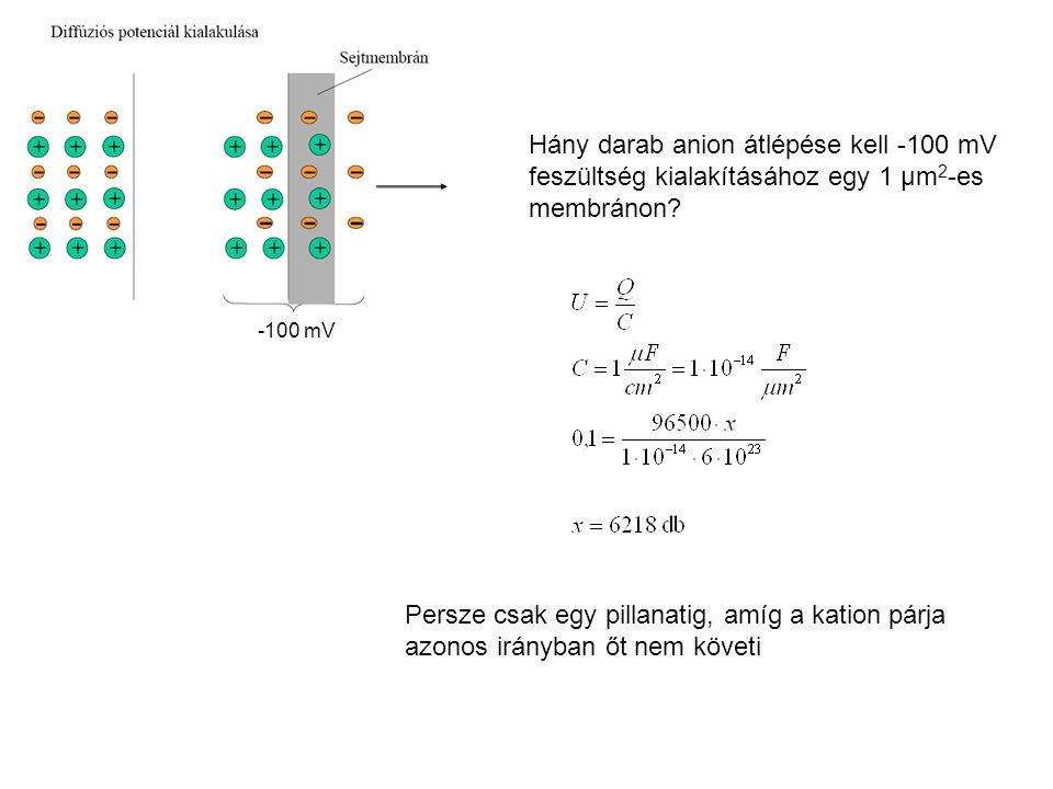 -100 mV Hány darab anion átlépése kell -100 mV feszültség kialakításához egy 1 μm 2 -es membránon? Persze csak egy pillanatig, amíg a kation párja azo