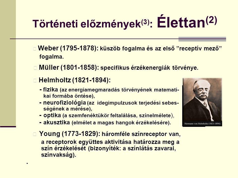 """Történeti előzmények (3) : Élettan (2) Weber (1795-1878): küszöb fogalma és az első """"receptív mező"""" fogalma. Müller (1801-1858): specifikus érzékenerg"""