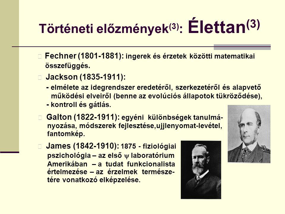 Történeti előzmények (3) : Élettan (3) Fechner (1801-1881): ingerek és érzetek közötti matematikai összefüggés. Jackson (1835-1911): - elmélete az ide