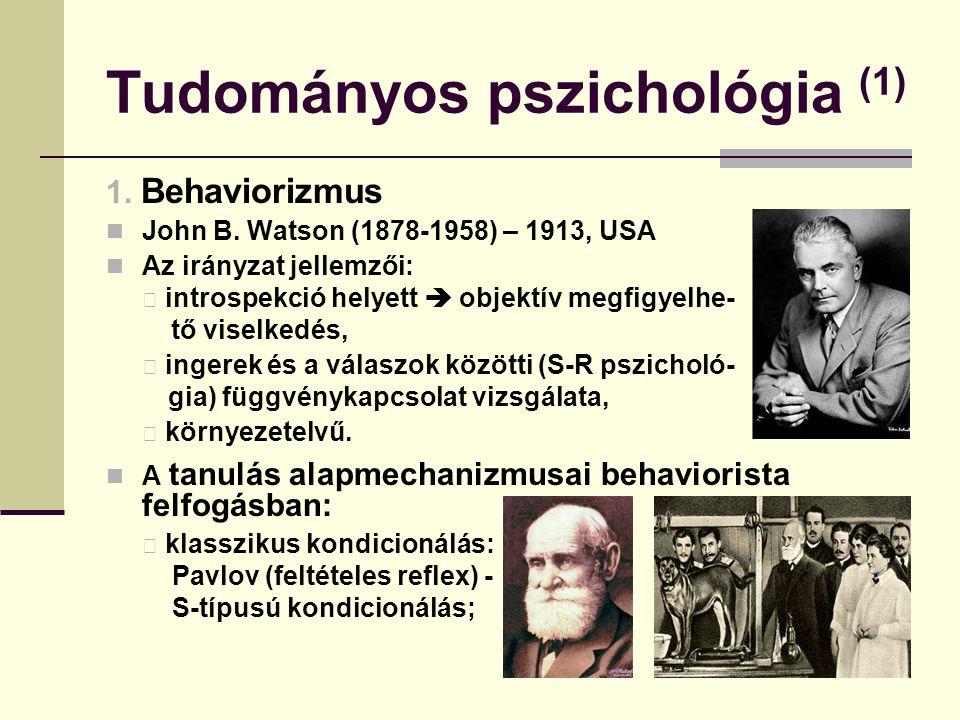 Tudományos pszichológia (1) 1. Behaviorizmus John B. Watson (1878-1958) – 1913, USA Az irányzat jellemzői: introspekció helyett  objektív megfigyelhe
