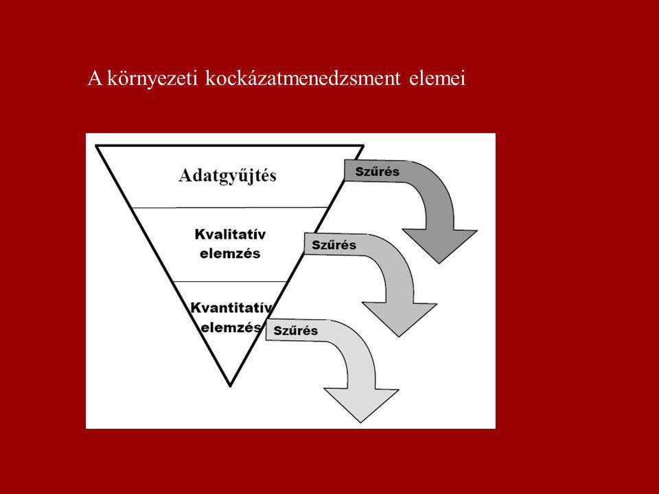 A környezeti kockázatmenedzsment szerkezete