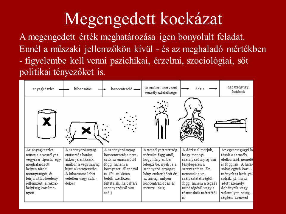 Szerves Oldószerek, Festékek Növényvédő szerek Gőzök Gázok Porok Egyéb rákkeltő vegyületek Hőhatás Nehéz- fémek Ionizáló sugárzás Zaj, vibráció Környezeti betegségeket okozó fizikai és kémiai tényezők