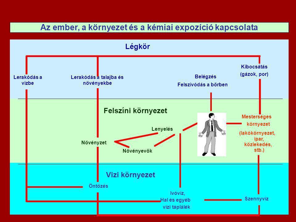 A kockázat háromszög Mérgező vegyi anyag Jelenléte a környezetben Toxicitás (akut, krónikus, fejletlen szervezetre ható) Összetétel-függő potencia Bio-elérhetőség (normális, ill.