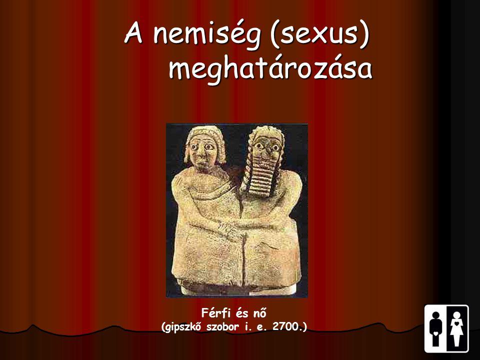 Férfi és nő (gipszkő szobor i. e. 2700.) A nemiség (sexus) meghatározása