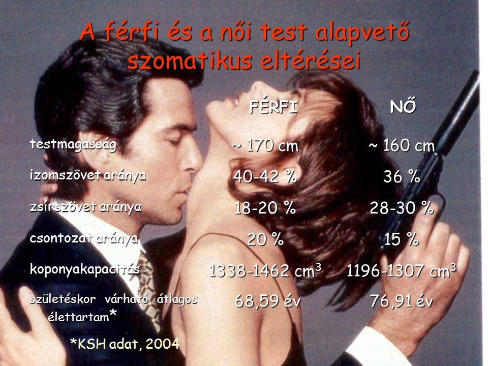 A férfi és a női test alapvető szomatikus eltérései FÉRFI NŐ NŐ testmagasság ~ 170 cm ~ 160 cm izomszövet aránya 40-42 % 36 % zsírszövet aránya 18-20 % 28-30 % csontozat aránya 20 % 15 % koponyakapacitás 1338-1462 cm 3 1196-1307 cm 3 születéskor várható átlagos élettartam * 68,59 év 68,59 év 76,91 év *KSH adat, 2004