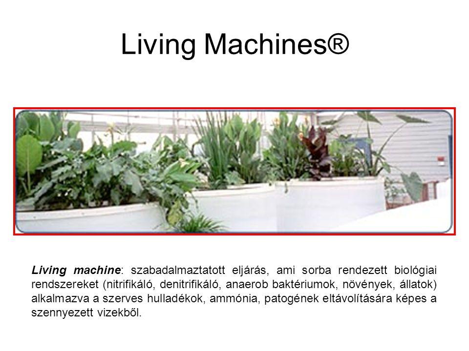 Living Machines® Living machine: szabadalmaztatott eljárás, ami sorba rendezett biológiai rendszereket (nitrifikáló, denitrifikáló, anaerob baktériumo
