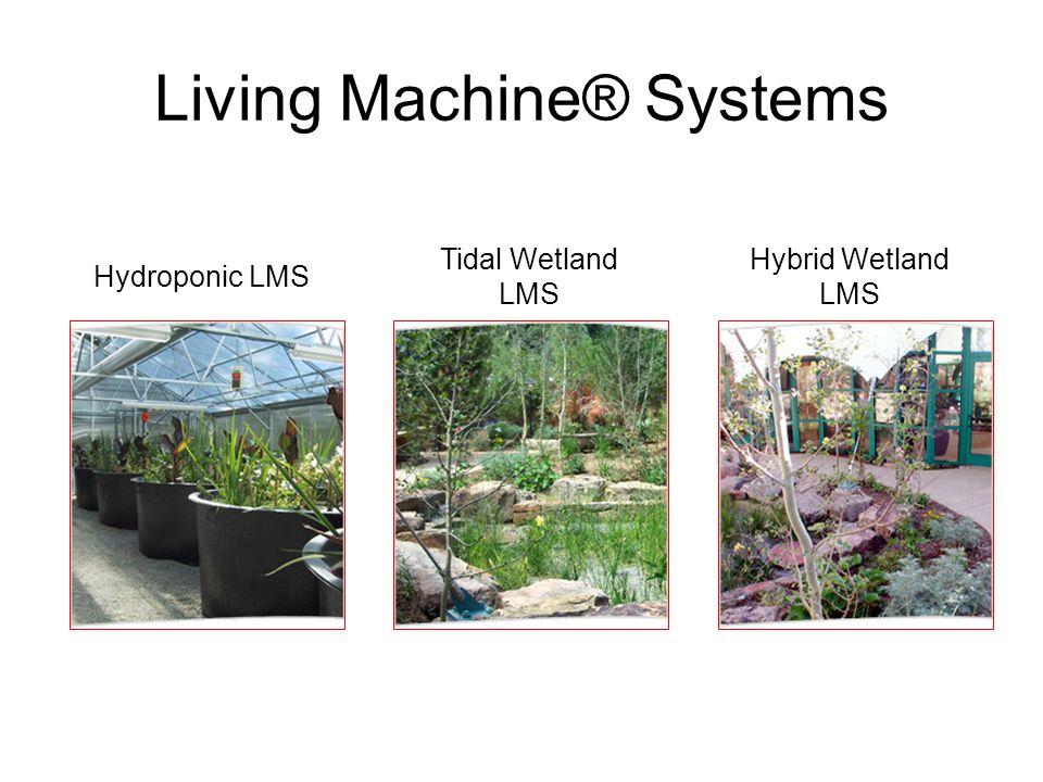 Hydroponic LMS Tidal Wetland LMS Hybrid Wetland LMS Living Machine® Systems
