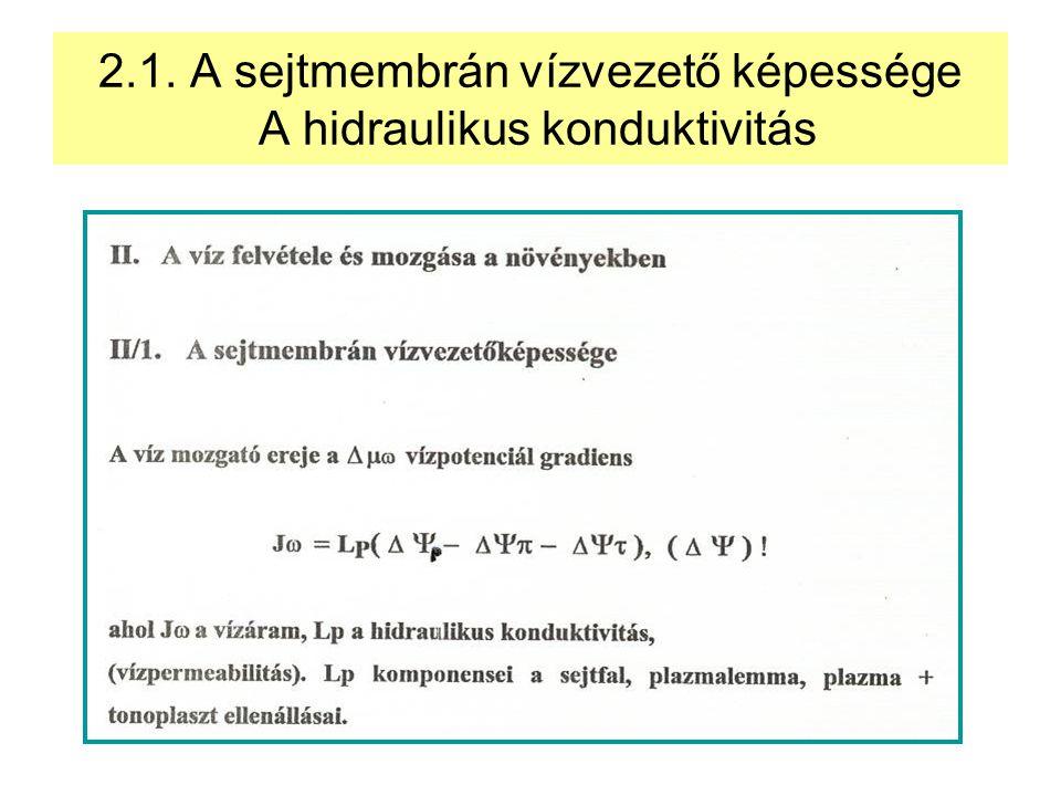 2.1. A sejtmembrán vízvezető képessége A hidraulikus konduktivitás