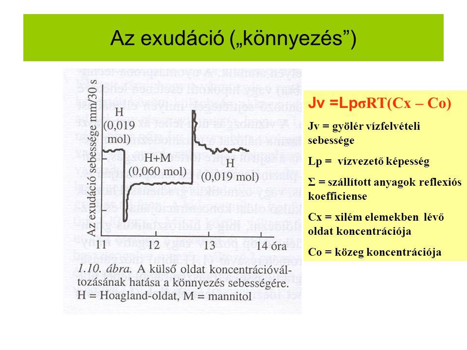 """Az exudáció (""""könnyezés ) Jv =Lp σRT(Cx – Co) Jv = gyölér vízfelvételi sebessége Lp = vízvezető képesség Σ = szállított anyagok reflexiós koefficiense Cx = xilém elemekben lévő oldat koncentrációja Co = közeg koncentrációja"""