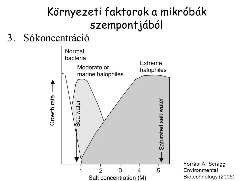 3.Sókoncentráció Forrás: A. Scragg - Environmental Biotechnology (2005) Környezeti faktorok a mikróbák szempontjából