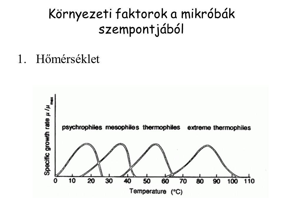 Környezeti faktorok a mikróbák szempontjából 1.Hőmérséklet