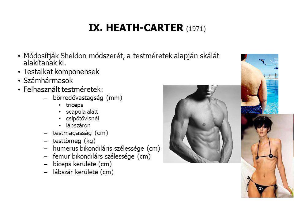 IX. HEATH-CARTER (1971) Módosítják Sheldon módszerét, a testméretek alapján skálát alakítanak ki. Testalkat komponensek Számhármasok Felhasznált testm
