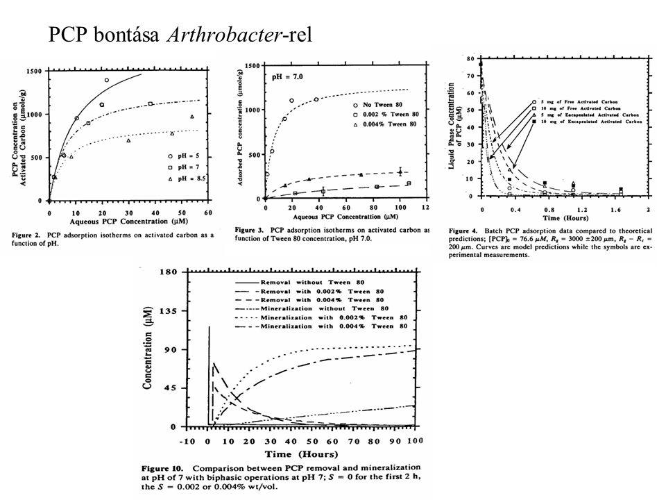 PCP bontása Arthrobacter-rel